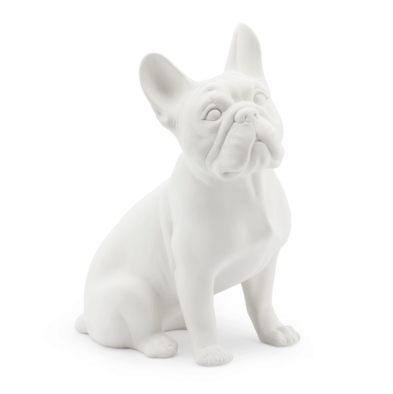 abhika frenchbulldog